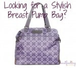 Looking for a Stylish Breast Pump Carrying Bag?