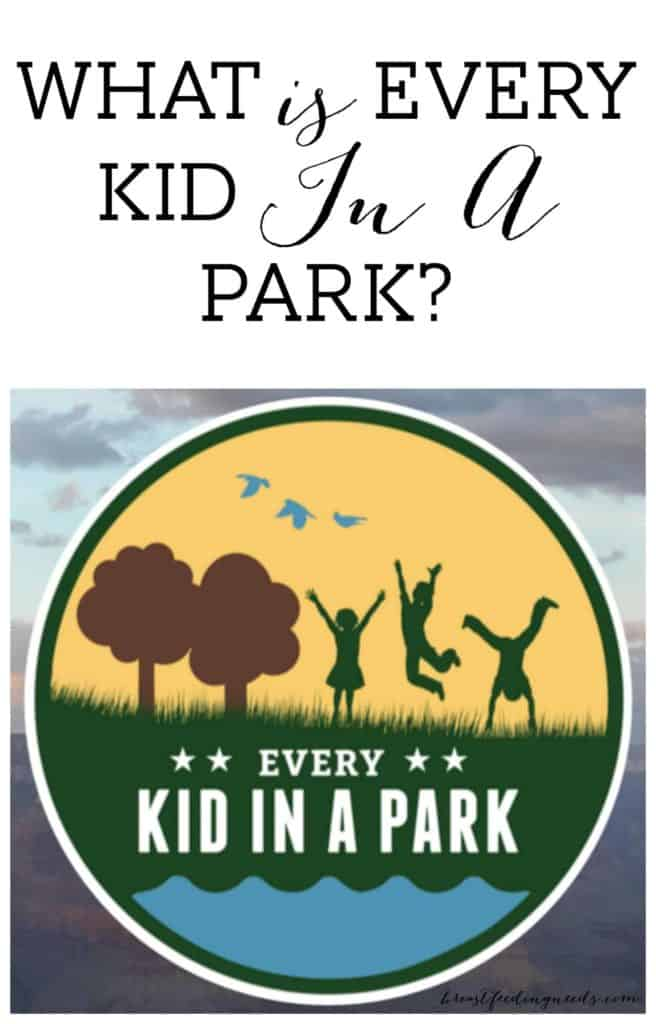 What is Every Kid in a Park?