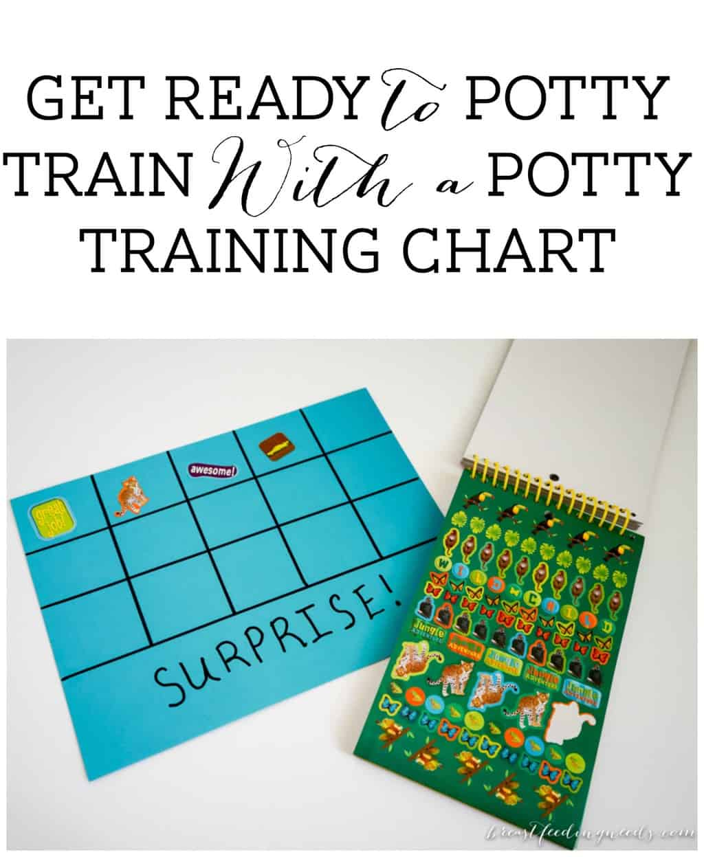 get ready to potty train a potty training chart potty training