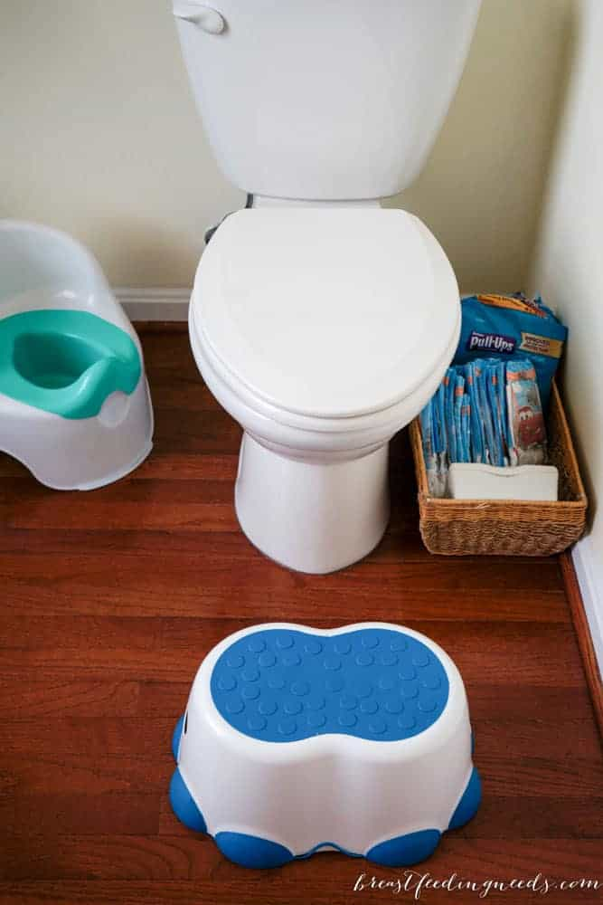 Potty Training With Pull-Ups® Learning Designs®