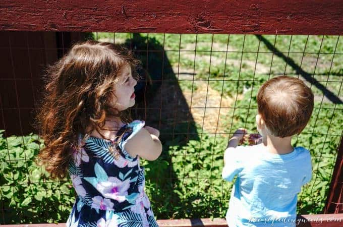 Juggling Three Children Under Four, One Month In